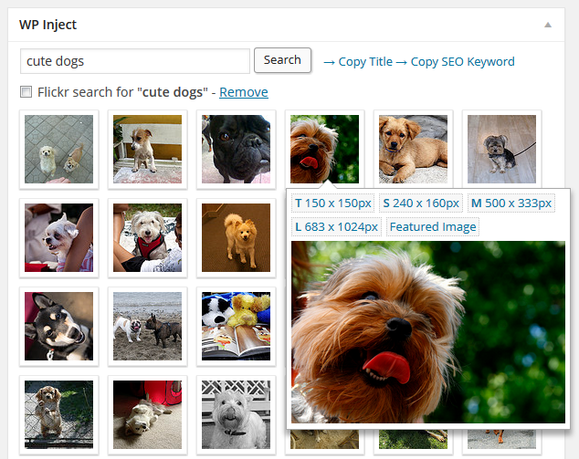 WP Inject photo search